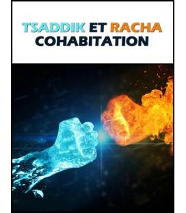 Tsaddik et racha: cohabitation (dvd)