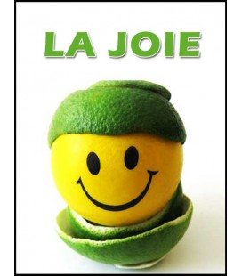 La Joie (dvd)