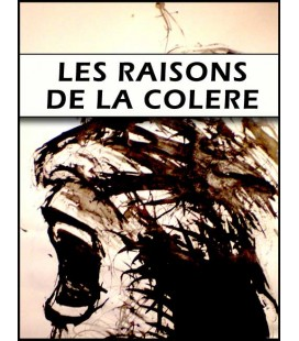 Les raisons de la colere (mp3)