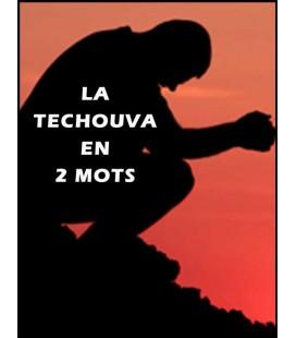 La Techouva en deux mots (cd)