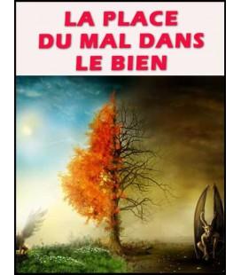 La place du mal dans le bien (dvd)