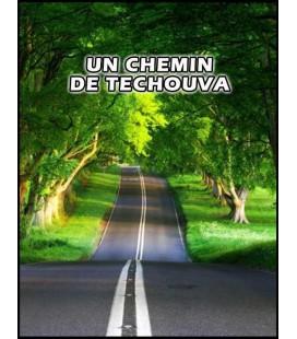 Un chemin de Techouva (dvd)