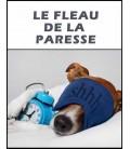 Le fleau de la paresse (dvd)