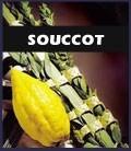 Souccot